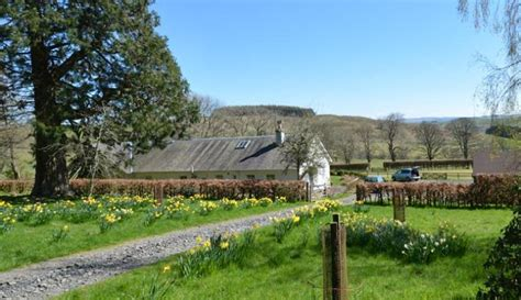 Easter Availability Cottages by Easter Harden Cottage The Scottish Borders Unique Cottages