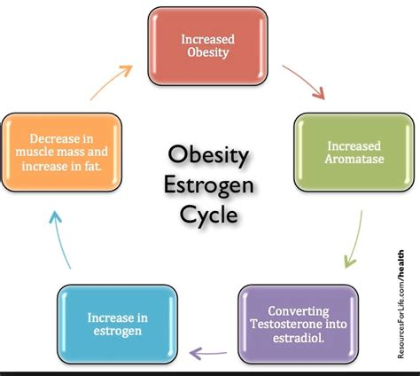 low estrogen mood swings hormones and weight gain symptoms that your body hates