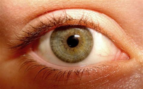 eye color and personality what does your eye color reveal about your personality