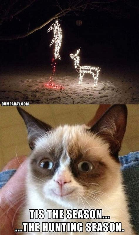 grumpy cat s christmas compilation 20 pics