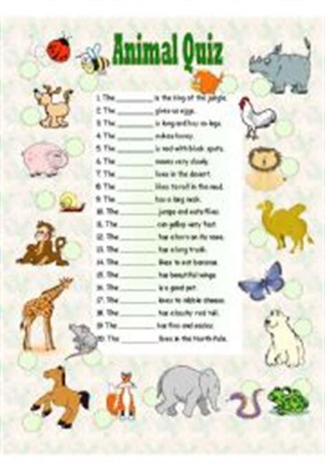 animal quiz worksheet animal quiz
