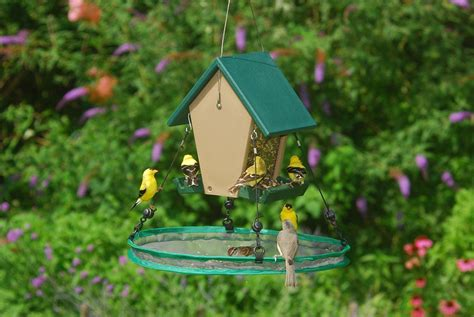 bird feeder seed catcher birdcage design ideas