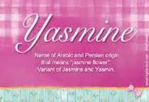 Yasmine name meaning yasmine name origin name yasmine meaning of