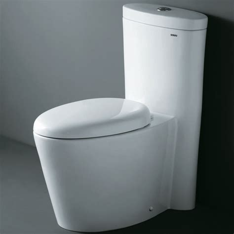 European Toilets That Spray Water Ariel Co1009 Contemporary European Toilet With Dual Flush