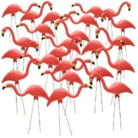 southern patio 26 in pink flamingo 24 pack hdr 499492