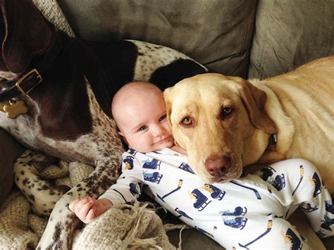 dogs that are with children 30 adorable photos proving that your need a bored panda