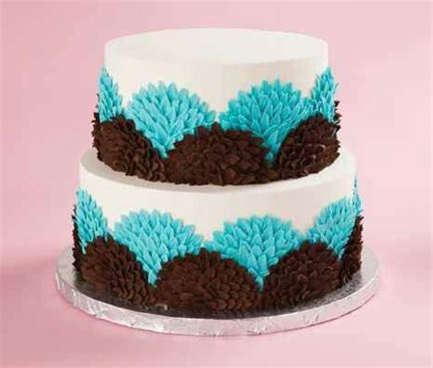 Cake Decorating Tips For Beginners by Beginner Cake Decorating Beginner Cake Decoration