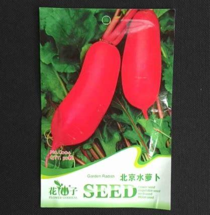 Radish Lobak Merah benih lobak merah radish 40 biji retail asia
