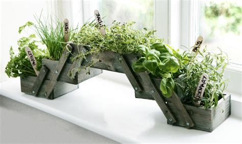 Window Herb Garden Pots Shabby Chic Folding Wooden Herb Planter Kit Seeds Kitchen