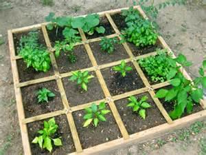 hydroponic vs soil gardening archives atlantis