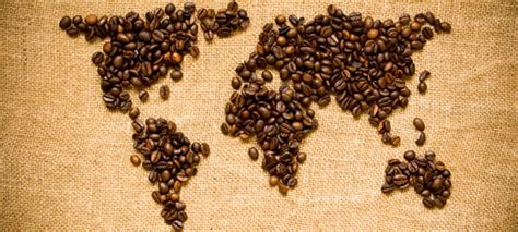 Coffee World a beginner coffee guide for the tired ppc professional