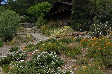 Regional Parks Botanic Garden Regional Parks Botanic Garden File Regional Parks Botanic Garden Jpg Regional Parks Botanic