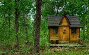 tiny house in the forest full hd wallpaper and background