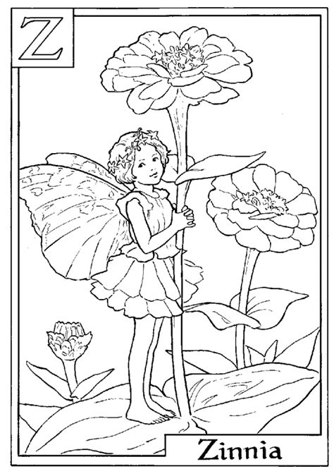 Coloring Page Zinnia by Letter Z For Zinnia Flower Coloring Page Alphabet