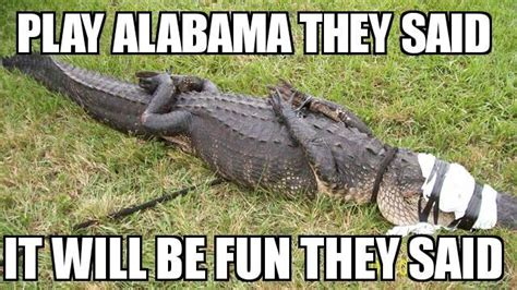 Funny Florida Gator Memes - best sec football memes from rivalry week 2015