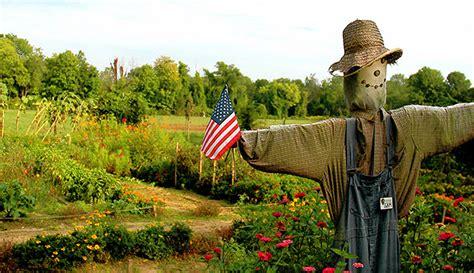 scarecrow  farm materials hobby farms
