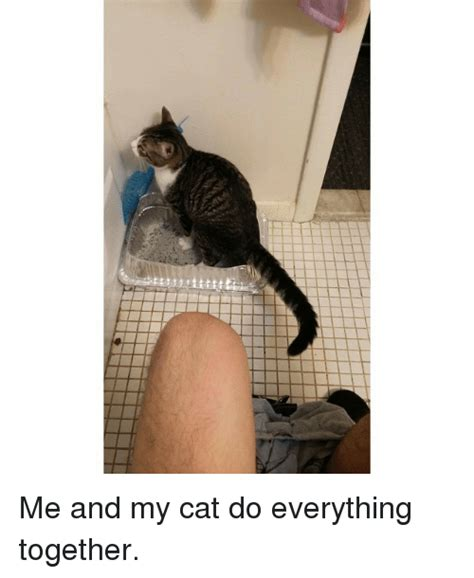 me and my cat me and my cat do everything together meme on sizzle