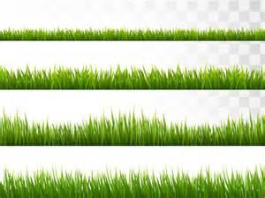 15 grass vectors free psd ai eps format download
