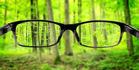 understanding vision in a quot visionary founder quot