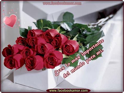 related keywords suggestions for imagenes bonitas de navidad image gallery imagenes de flores romanticas