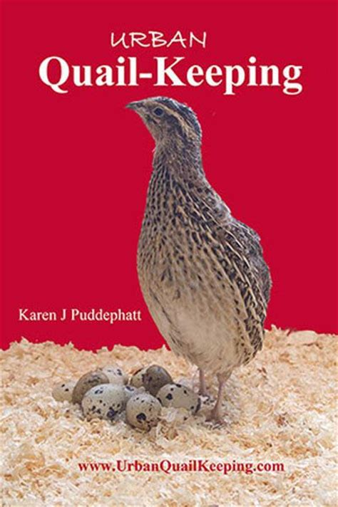 pheasant keeping for a practical handbook on the rearing and general management of aviary pheasants classic reprint books 24 best images about quail breeds on raising