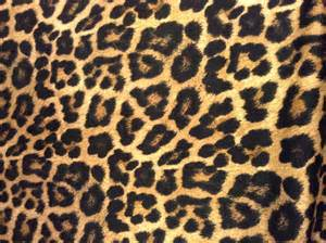 animal print template animal print pattern pattern print