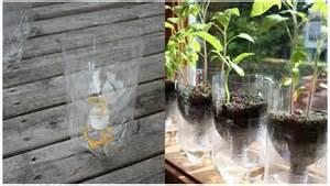 diy indoor gardening self watering soda bottle planter