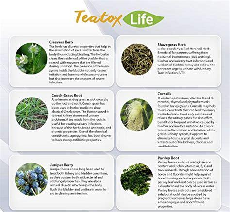 Detox Kidneys With Parsley by Kidney Cleanse Detox Tea With Parsley Juniper Berries