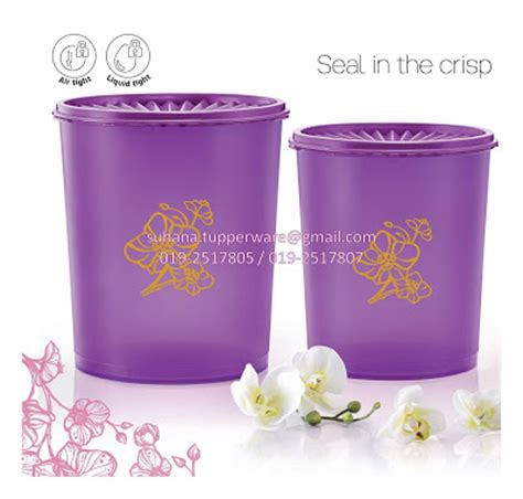 Tupperware Deco Canister 2pcs tupperware brands malaysia catalogue collection business opportunity