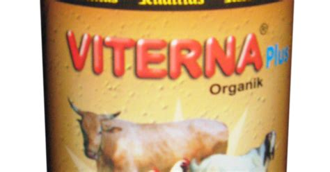 Vitamin Alami Untuk Ayam Petelur vitamin ternak sapi dan unggas
