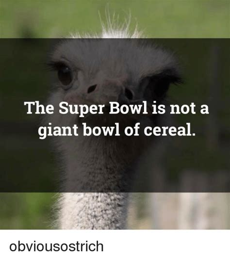 Cereal Bowl Meme - 25 best memes about bowls of cereal bowls of cereal memes