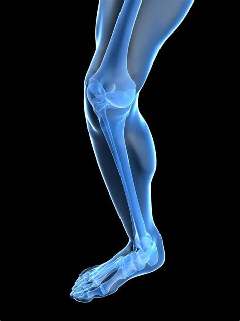 Knee Ankle are ankle weights bad for your knees answers on healthtap