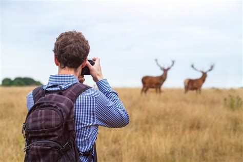 best wildlife photography what s the best for wildlife photography nature ttl