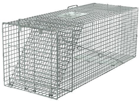gabbia trappola per gatti idee per trappola per gatti fai da te immagini decora