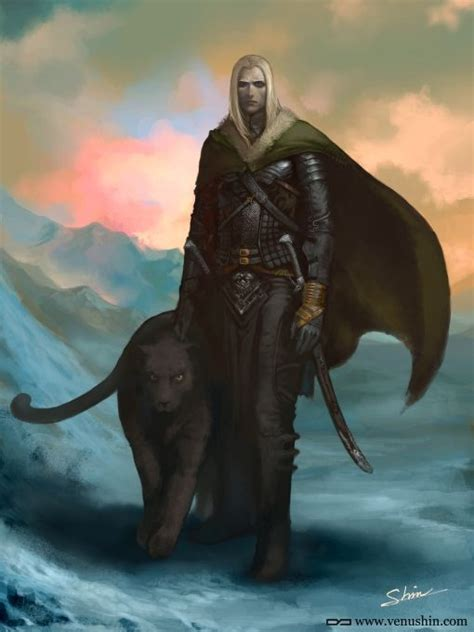 drizzt 011 forgotten realms 59 best images about drizzt on legends any book and