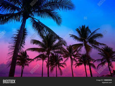 South Florida Detox Sunset by Image Et Photo De Miami South Sunset Bigstock