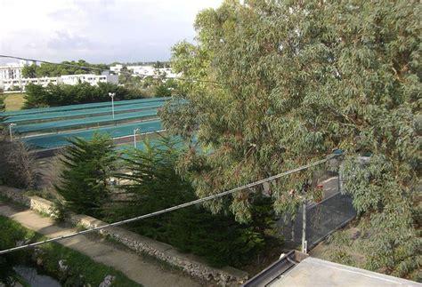 conchiglia azzurra hotel porto cesareo resort conchiglia azzurra 224 porto cesareo 224 partir de 97