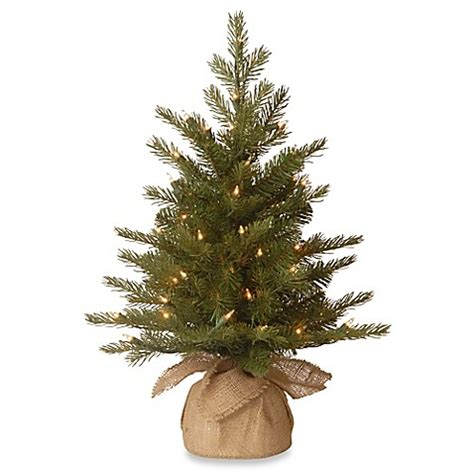 national tree 2 foot nordic spruce christmas tree bed