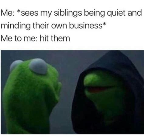 Sibling Memes - best 25 siblings funny ideas on pinterest siblings