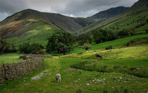 imagenes jpg naturaleza 25 impresionantes fotos naturaleza hd wallpapers 2560 x