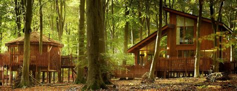 luxury treehouse holidays breaks in the uk wwc