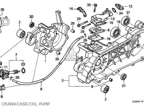 honda sfx 50 service manual