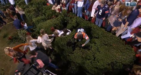 auburn fans in bushes totally worth it auburn fined 250 000 by sec for rushing