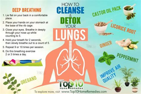 Home Remedy Detox And Cleaners For by How To Cleanse And Detox Your Lungs Top 10 Home Remedies