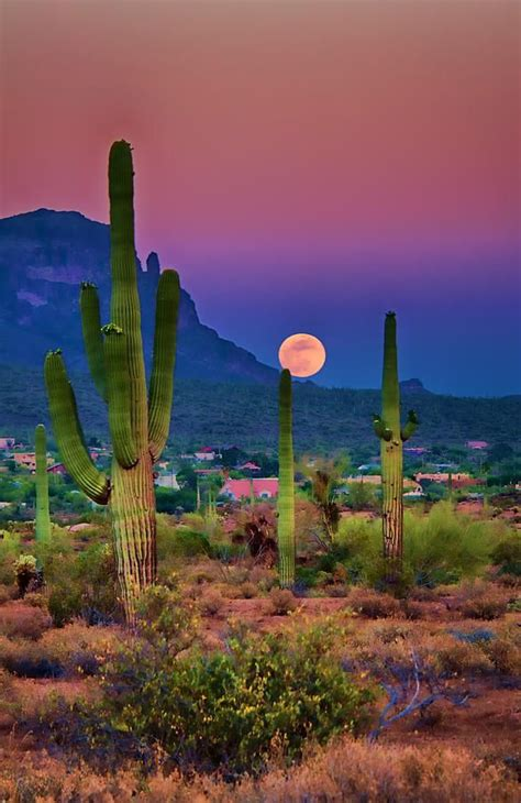 paint nite yuma az 25 best ideas about landscape photography on