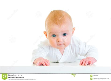 baby 4 months royalty free interested four month baby laying on abdomen royalty free stock image image 19997686