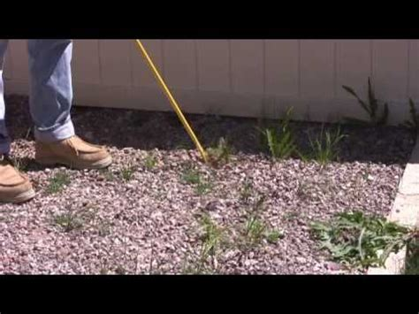 How To Cut Weeds In Backyard by Ergonica Turbo Vs Weeds In Rocky Landscaping