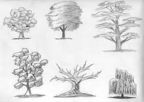 sketch trees by digikijo on deviantart