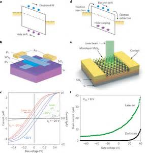 photodiode material photodetection in a 1l mos2 and in a slg ws2 slg heterostructure photodetectors based on