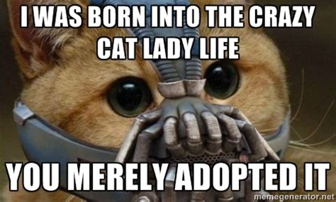 Lady Memes - crazy cat lady memes image memes at relatably com